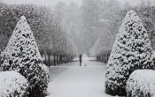 mount in snow 2014 grace & pip