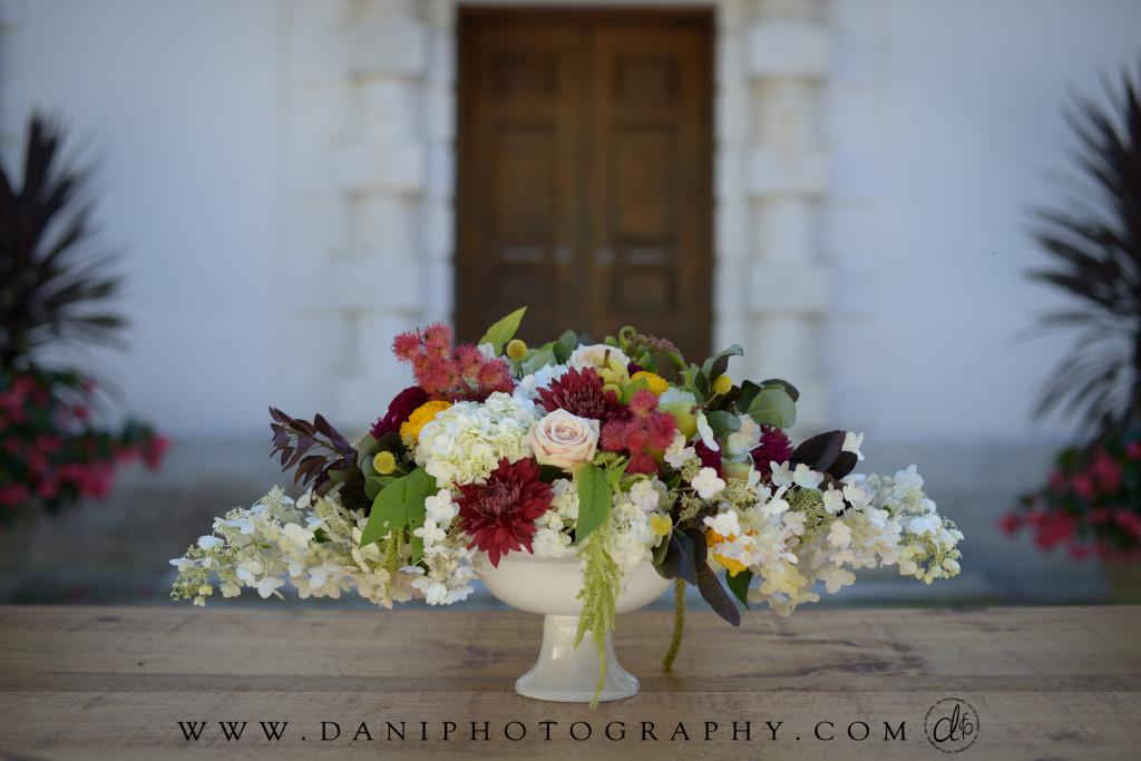 __dani_fine_photography_DaniFinePhotography0001