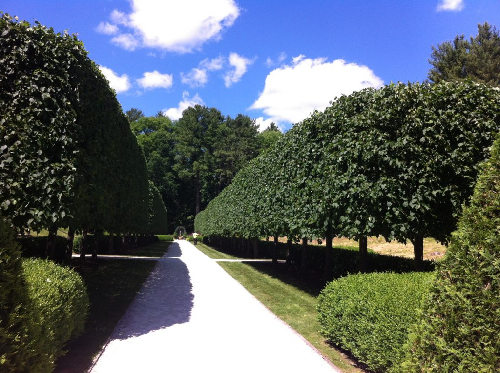 2014-06-19 Mount garden walkway with trimmed treesby Rebecka McDougall – Copy