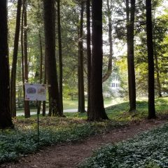 STORYWALK ® at The Mount @ The Mount, Edith Wharton's Home