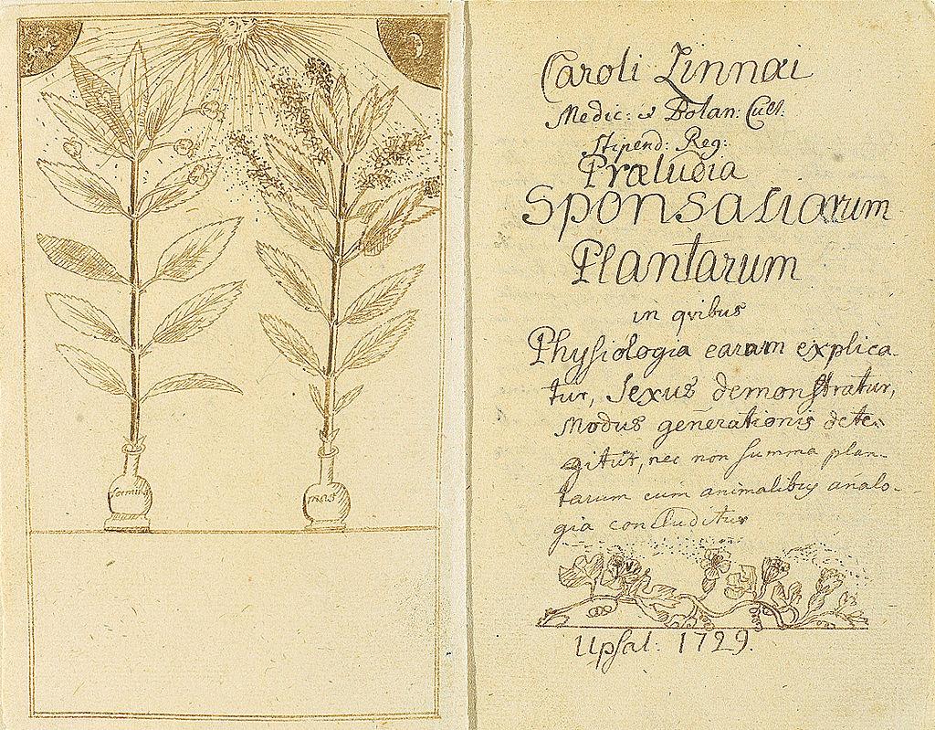 Carl Linnaeus on Plant Reproduction, January 1729